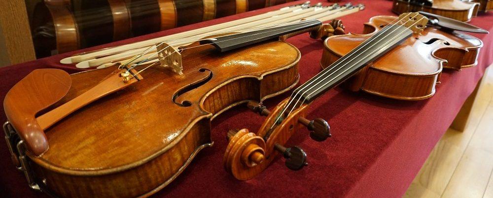 弦楽器ヤマシタについて
